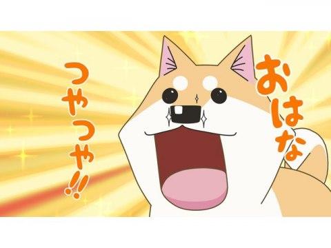 #1 おはなつやつやムーコはこまつさんが大好き!