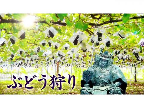 富士の国やまなし観光PR映像「知ってござるか山梨」