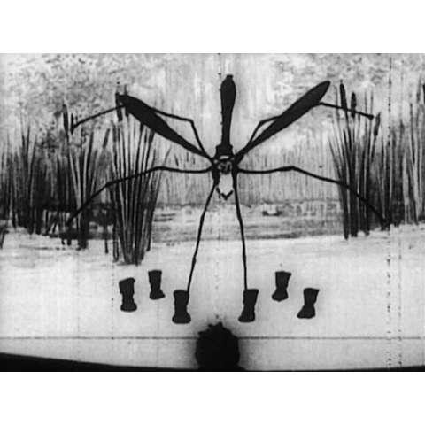 虫のサーカス