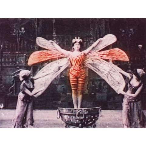 初期フランス 金の甲虫