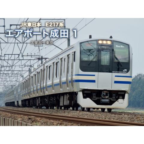 E217系エアポート成田 1(久里浜~東京)