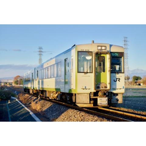 キハ110系八高線 (高麗川~高崎)