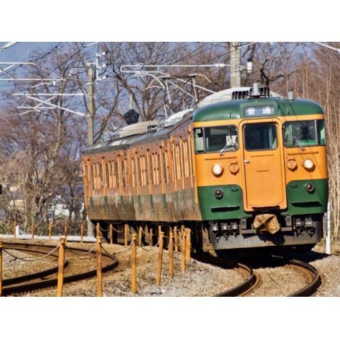 115系 上越線Vol.2(高崎~水上~高崎)