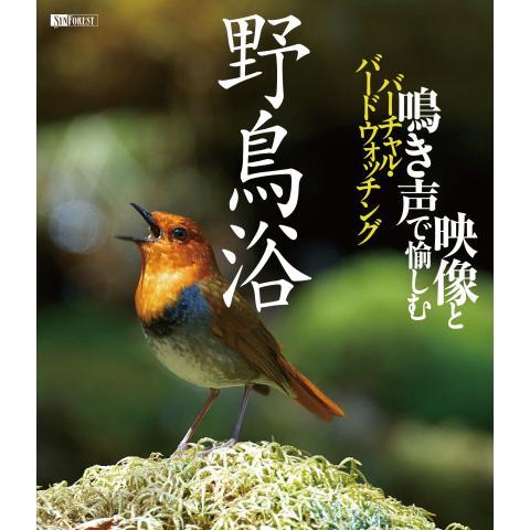 野鳥浴 映像と鳴き声で愉しむバーチャル・バードウォッチング