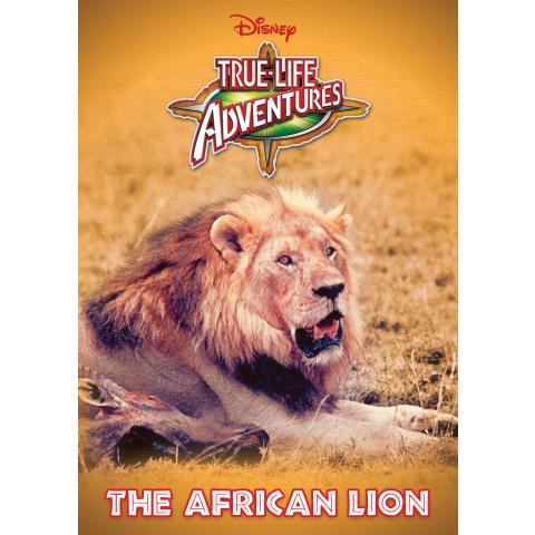 百獣の王~ライオン