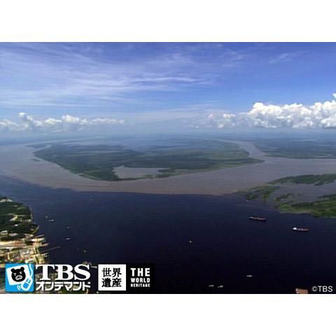 世界遺産~セントラルアマゾン自然保護区群(ブラジル)~