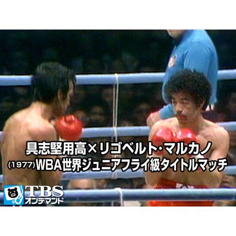 具志堅用高×リゴベルト・マルカノ(1977) WBA世界ジュニアフライ級タイトルマッチ