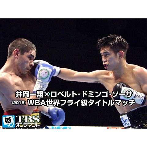 井岡一翔×ロベルト・ドミンゴ・ソーサ(2015) WBA世界フライ級タイトルマッチ