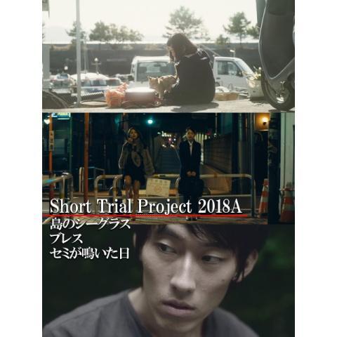 Short Trial Project 2018A /島のシーグラス/ブレス/セミが鳴いた日