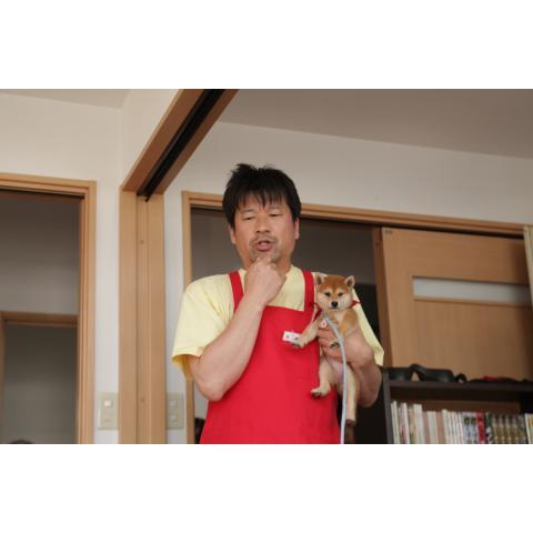 ドラマ マメシバ一郎 フーテンの芝二郎