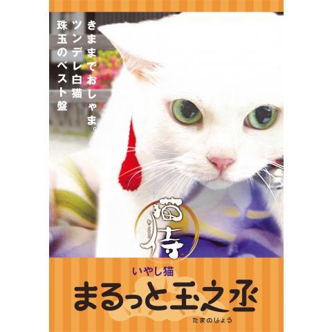猫侍 まるっと玉之丞