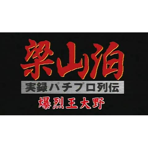 実録 梁山泊 パチプロ列伝 爆裂王大野