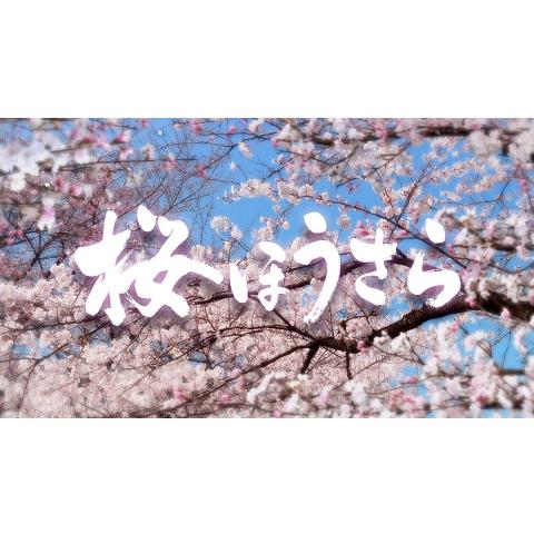 桜ほうさら