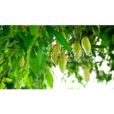 マンゴーの樹の下で