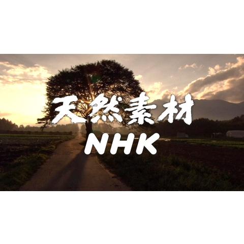 天然素材NHK
