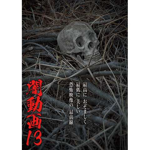 闇動画13 恐怖の心霊怪奇映像集