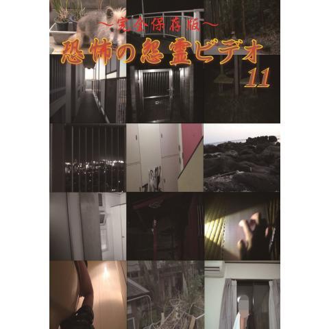 ~完全保存版~恐怖の怨霊ビデオ11