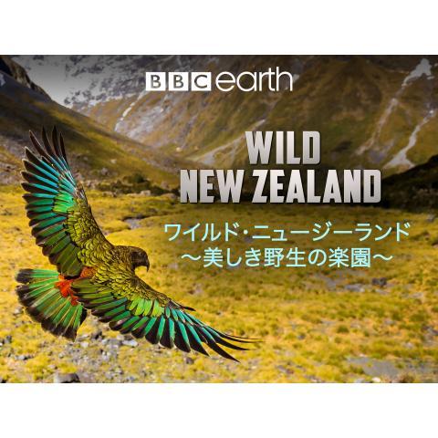 ワイルド・ニュージーランド~美しき野生の楽園~