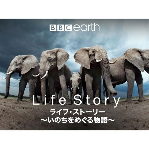 ライフ・ストーリー ~いのちをめぐる物語~