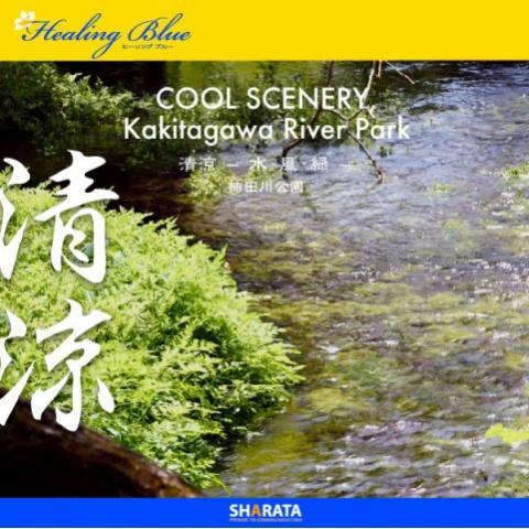 【HealingBlueヒーリングブルー】清涼 - 水・風・緑  柿田川公園