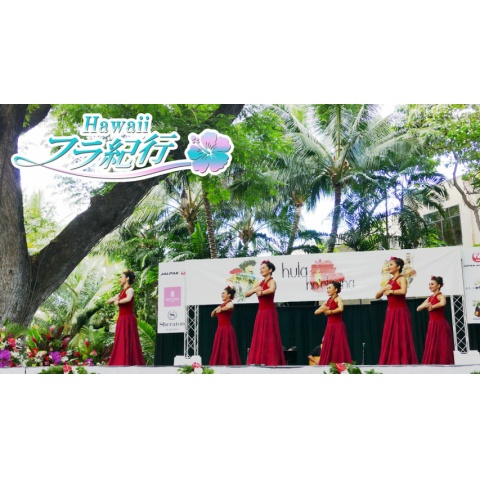 Hawaiiフラ紀行 シーズン3