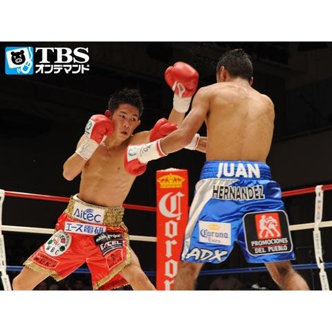 井岡一翔×ファン・エルナンデス(2011) WBC世界ミニマム級タイトルマッチ