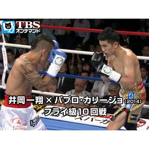 井岡一翔×パブロ・カリージョ(2014) フライ級10回戦