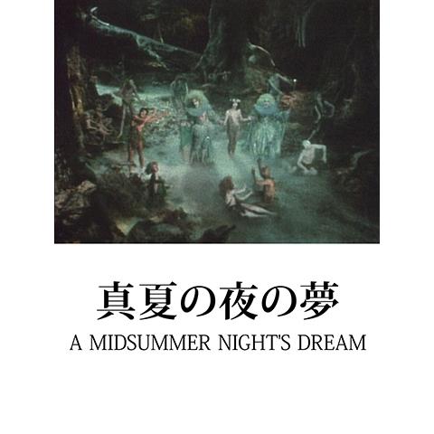真夏の夜の夢