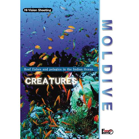 MOLDIVE THE CREATURES インド洋の真珠 モルジブ/クリーチャーズ