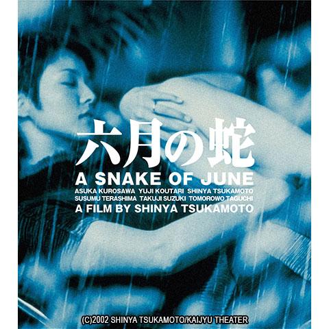 六月の蛇 ニューHDマスター