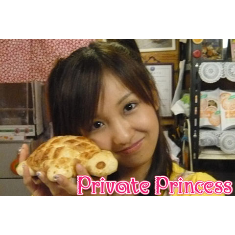板野友美  Private Princess