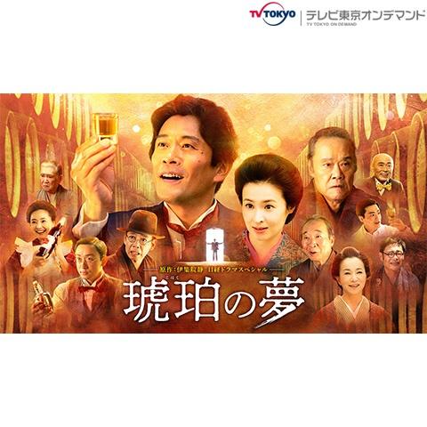 日経ドラマスペシャル「琥珀の夢」