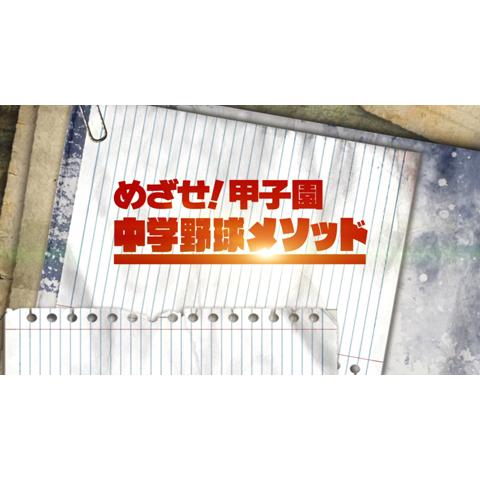 めざせ!甲子園 ~中学野球メソッド~