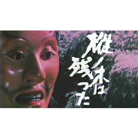 大河ドラマ 樅ノ木は残った