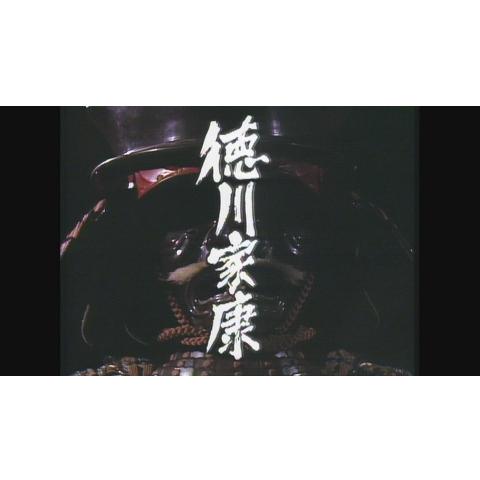 大河ドラマ 徳川家康