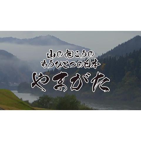 山の向こうのもうひとつの日本 やまがた