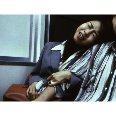 西田ももこ/欲望という名の終電車2 官能プラットホーム(R15版)