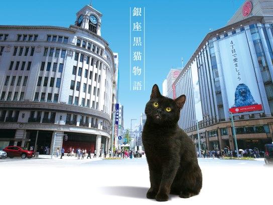 銀座黒猫物語