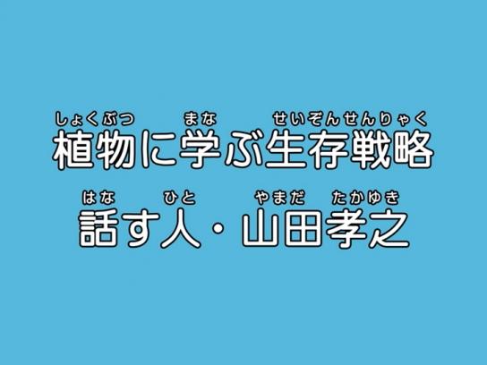 動画 バラエティ 無料