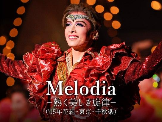 Melodia -熱く美しき旋律-('15年花組・東京・千秋楽)