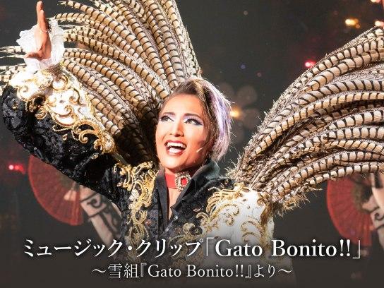 ミュージック・クリップ「Gato Bonito!!」~雪組『Gato Bonito!!』より~